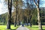 Ruhiger Ausklang bei der Villa Sonnwend ... inklusive ...
